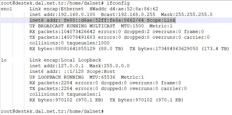 Sunucuda IPv6 Görüntüleme