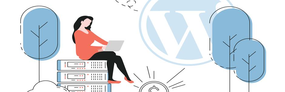 Wordpress Sitemiz için En Uygun Altyapıyı Nereden Bulacağız