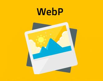 webp dalnet logo