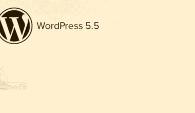 WordPress 5.5 Güncellemesi Sonrası Hatalar Nasıl Düzeltilir?